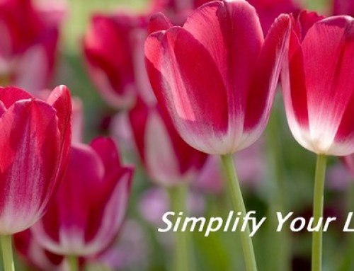 It's Spring! Is It Time to Declutter Your Life? =)